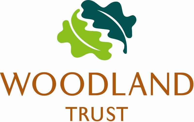 Woodland Turst Istoria Wood Floors by Jordan Andrews